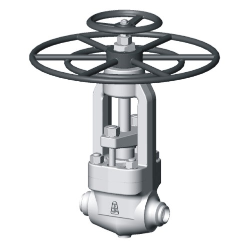 Blow-down and continuous blow-down valves